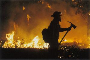 U dva dana 74 000 poziva građana za stradale vatrogasce