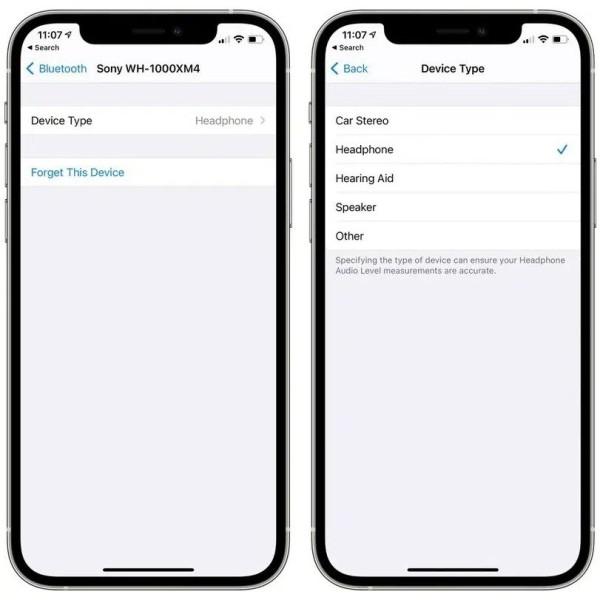 Apple iOS 14.4_2
